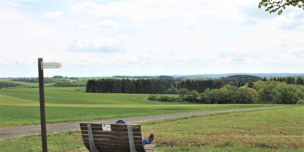 Waldsofa und Weitblick_Rundweg Weiherbachtal