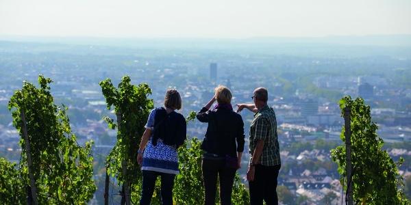 Weinausschank am Wartberg | Heilbronn
