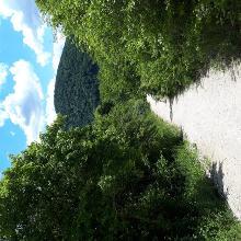 Miklós-Pál hegy