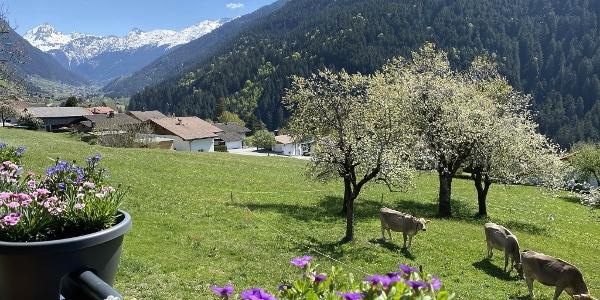 Aussicht Vallüla