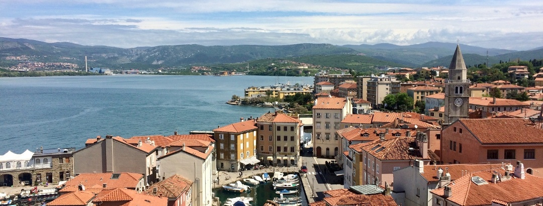 Muggia from above