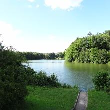 Der Michelbachsee