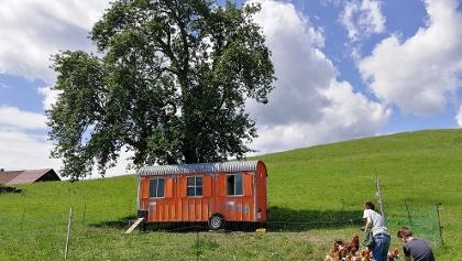 Hier wohnen die Hühner im Bauwagen, cool.