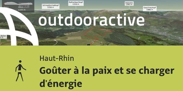 randonnée - Haut-Rhin: Goûter à la paix et se charger d'énergie