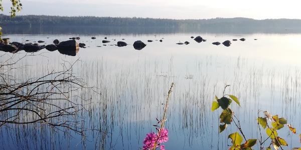 Torsanjärvi