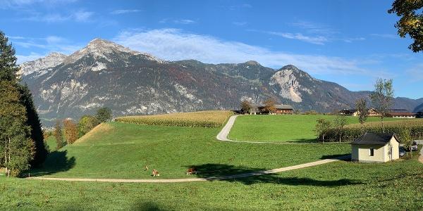 Panoramaweg Reith im Alpbachtal