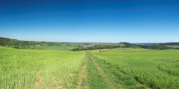 Panoramablick über die Höhen des Hochwalds