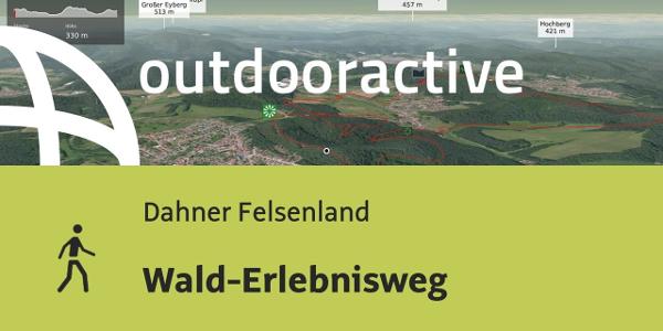 Wanderung im Dahner Felsenland: Wald-Erlebnisweg
