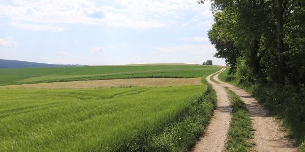 Wanderung in der Landschaft um Kößlarn
