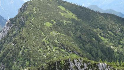 Anstieg zum Niederen Kalmberg