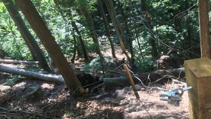 Abstieg zum Eselsbrunnen, kurz und steil (etwas Vorsicht tut gut)