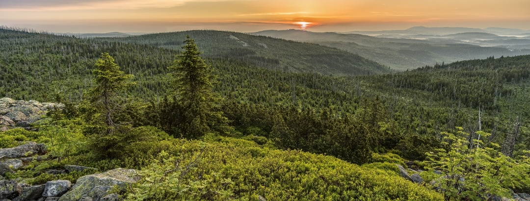 Sunrise in the Bavarian Forest