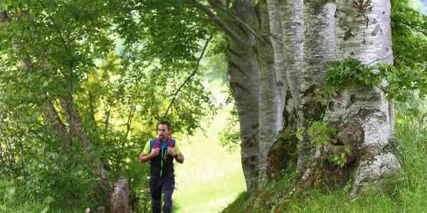 Escursione a Piedi sull'Altopiano di Tonezza - Monte Toraro La Via delle PREALPI