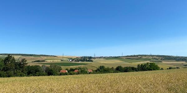 Blick vom Ebertsheimer Berg