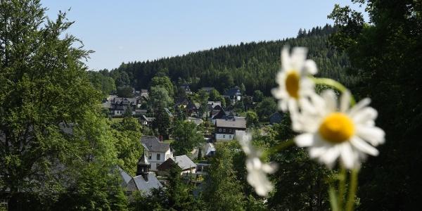 Bärenfels Ortsansicht