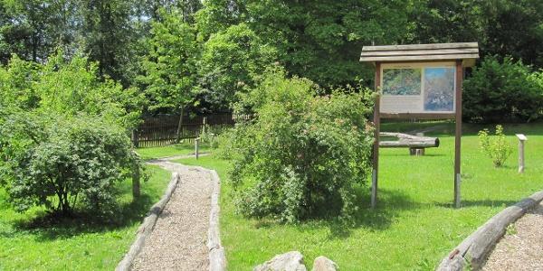 Walderlebniszentrum Forsthof Bärenfels