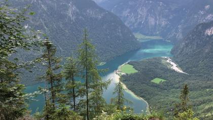 Blick von der Achenkanzel auf den Königssee