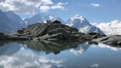 Blick von Forcla Surlej auf das Bernina Massiv