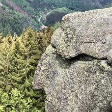 Der Alte vom Berg