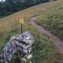 Nähe Eilsbrunn