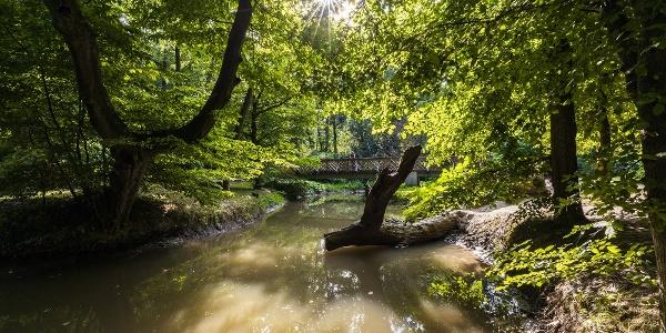 Híd a Gaja patakon, az Ádám–Éva-fánál