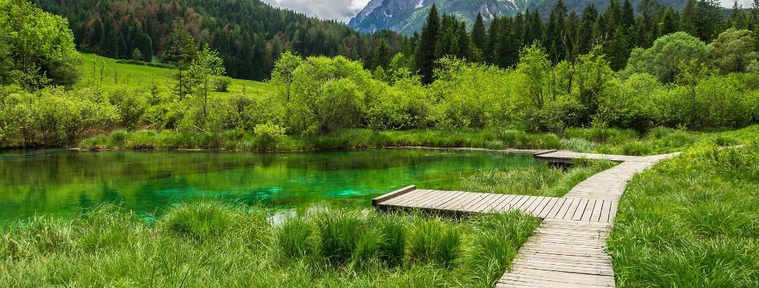 Naturreservat Zelenci