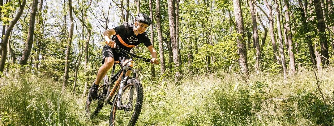 Mountainbiken in der Urlaubsregion Altenberg