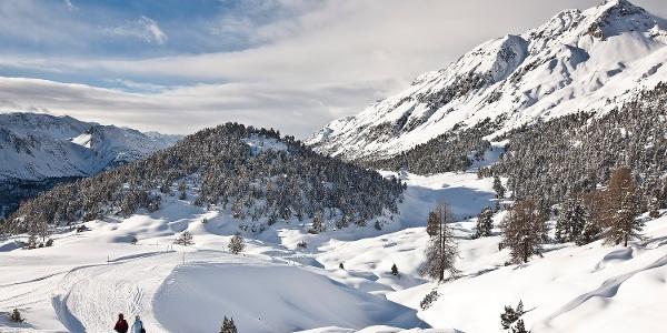 Winterwanderweg vom Bergrestaurant Alp da Munt zur Talstation Era Sot.