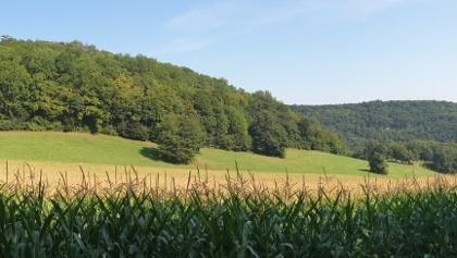 Rabental beim Weizenbauer, Donnerstag, 13. August 2020