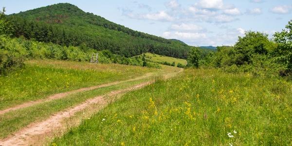 Útban a Tokaji-hegység belseje felé, Erdőhorváti felett