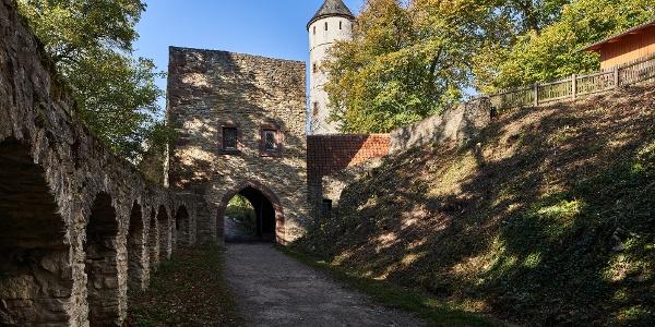 Eingang zur Burg Plesse