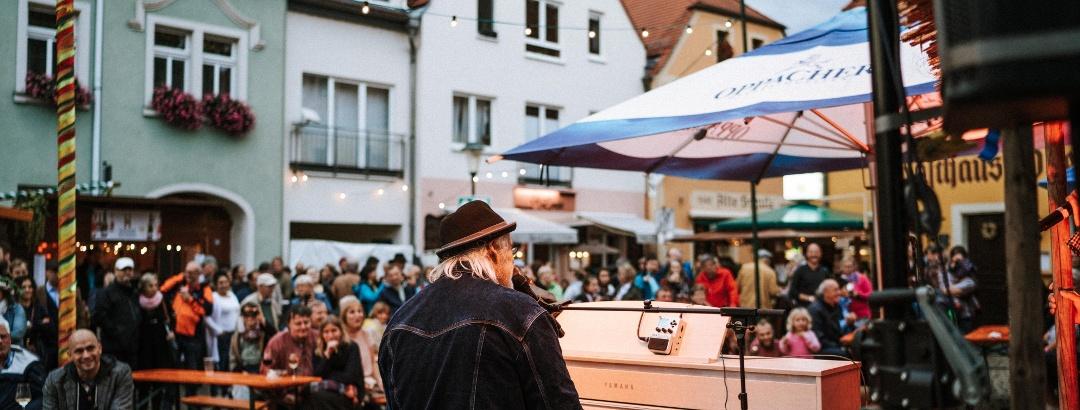 Musiker auf dem Herbst- und Weinfest Radebeul