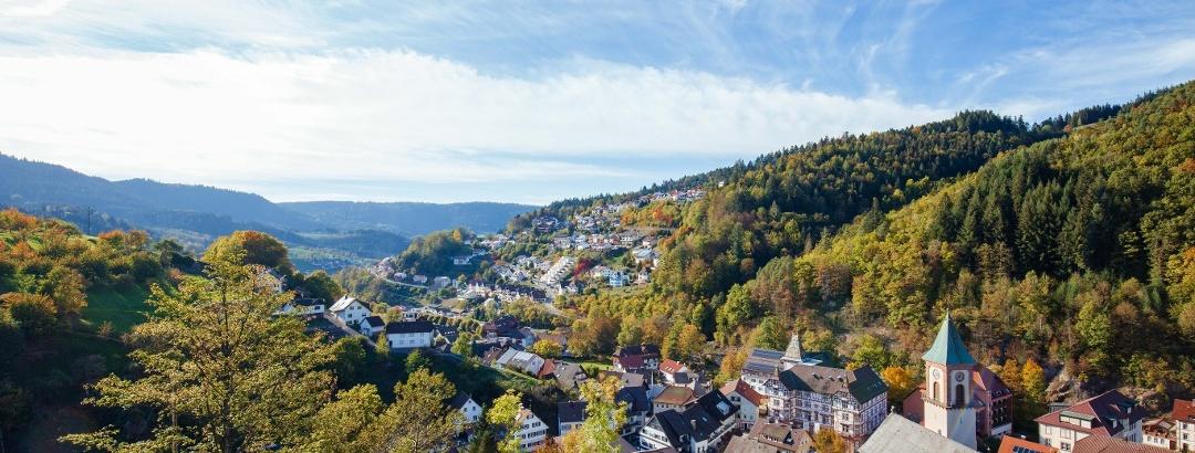 Aussicht auf Bad Griesbach