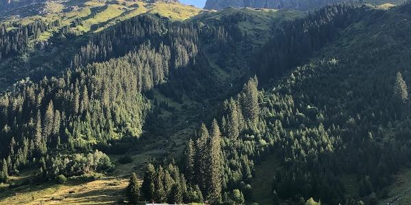 Alp Garfiun