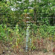 Uff, 23 Drahtspanner alle 50 mtr am Zaun entlang der A1, im privaten eher undenkbar