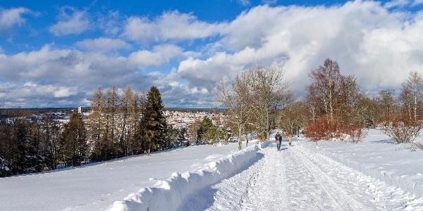 Winterwandern auf dem Kienberg