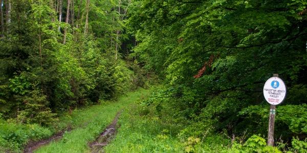A Bálvány peremétől az Ablakos-kő-völgyi rezervátum szélén túrázunk