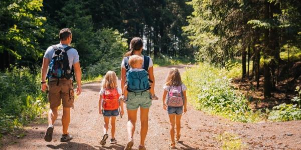 Wanderwege Markneukirchen mit  Familie