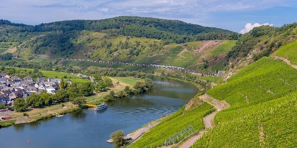 Blick auf den Weinort Pünderich und das Eisenbahnviadukt