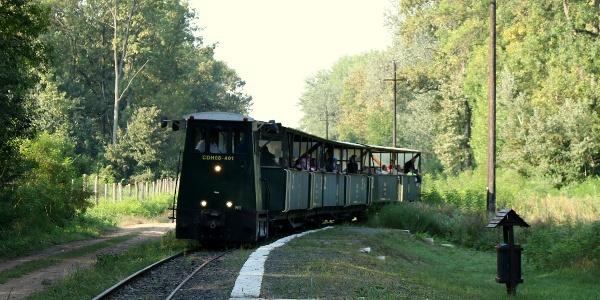 Gemenci Erdei Vasút (Vadmegfigyelő megállóhely)