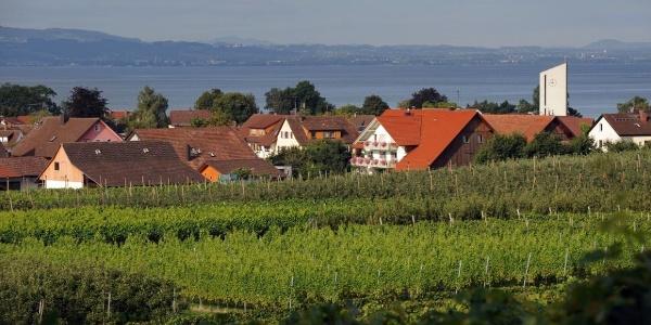 Blick auf Nonnenhorn, See und Berge