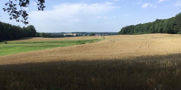 Landschaft bei Bärnsdorf