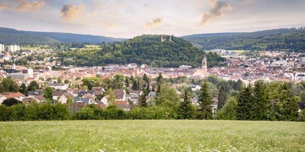 Tuttlingen mit Blick auf Ruine Honberg