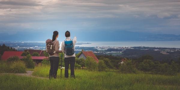 Wandern am Gehrenberg