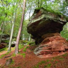 Felsen am Rothenberg