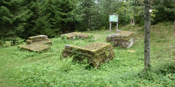 Ruine Königswart
