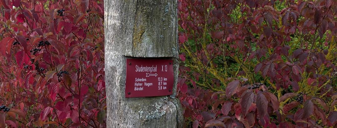 Studentenpfad X13 bei Mengershausen