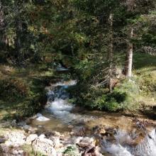 MaxSpera Ottobre 2020 Lago Tret river