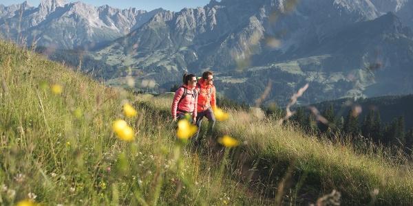 Panoramareiche Wanderung rund um Hinterthal