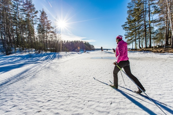Cross-country skiing in the Finnish winter landscape